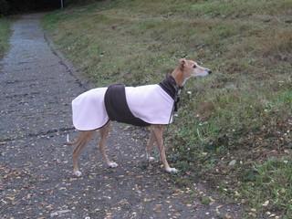 manteau galgo