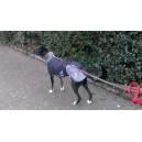 Manteau imperméable doudoune galgo greyhound
