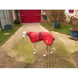 manteau imperméable doudoune bicolore style anglais pour lévrier