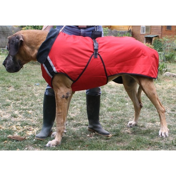 impermeable dogue allemand