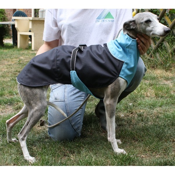 impermeable whippet
