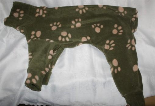 pyjama greyhound galgo